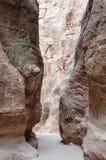 petra siq jordan fotografia stock