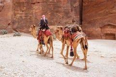 PETRA-siq in Jordanien Lizenzfreies Stockbild