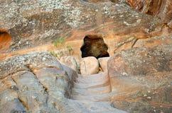 Petra Tomb Stock Afbeeldingen