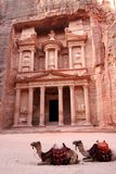 Petra Treasury with camels in Jordan Royalty Free Stock Photo
