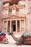 Petra Treasury Jordan Fotografia Stock