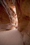 Petra - the Treasury viewed from the siq Royalty Free Stock Photo
