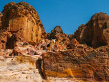 Petra View with White Donkey Royalty Free Stock Photography