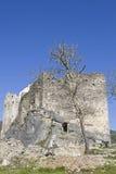 Petrapilosa的城堡 库存图片