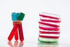 Petri dish, blood test, test-tube, syringe Stock Photography