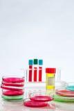 Petri dish, blood test, test-tube, syringe Stock Image