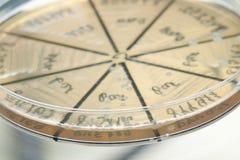 Bacteria on petri dish. Petri dish close up. Bacteria culture Stock Photography