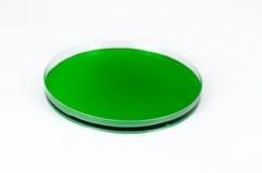Petri dish Royalty Free Stock Image