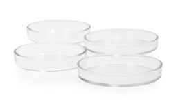 Petri dish Stock Images
