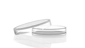 Petri dish open with reflection, laborat Stock Photo