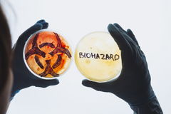 Petri dishes with biohazard word and symbol Royalty Free Stock Photos