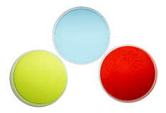 Petri Dishes with Colorful Agar Stock Photography