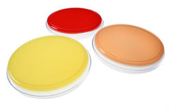 Petri dishes for medical resea Royalty Free Stock Image