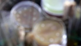 Petri dishes and test tubes in medical laboratory stock video footage
