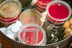 Petri dishes and test tubes Royalty Free Stock Photography