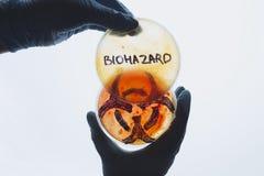 Petri naczynia z biohazard symbolem i słowem Fotografia Stock