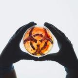 Petri naczynie z biohazard symbolem Obraz Stock