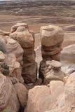 petrified национальный парк ландшафта пущи Стоковые Изображения RF