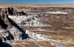 petrified национальный парк пущи Аризоны стоковая фотография rf
