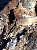 Petrified. Wood in the desert badlands of the Southwest stock photo