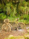 Petrified bike Stock Photo
