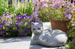 Petrified cat. Sphinx-like garden picture with flowers royalty free stock image