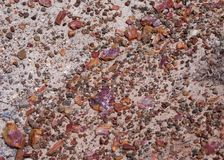 Petrified chips of wood litter the grey sandstone bedrock stock photography