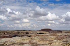 Petrified Forest Arizona royalty free stock photos