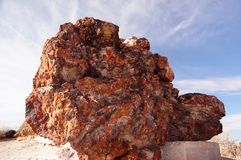 Petrified Forest, Arizona, USA Royalty Free Stock Image