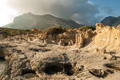 Petrified forest in Greece Royalty Free Stock Photography