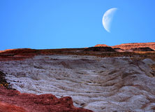 Petrified Forest and Moon Royalty Free Stock Photography