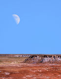 Petrified Forest and Moon Stock Photo