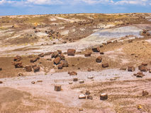 Petrified Forest National Monument Royalty Free Stock Image
