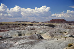 Petrified Forest National Park Stock Photography