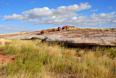 Petrified Forest National Park, Arizona Royalty Free Stock Photos