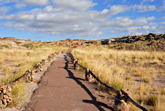 Petrified Forest National Park, Arizona Stock Photo