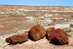 Petrified Forest. National Park in Arizona Stock Photos