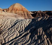 Petrified forest Royalty Free Stock Photo
