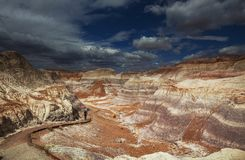 Petrified forest Royalty Free Stock Images