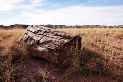 Petrified-Forest-National-Park, Arizona, USA Royalty Free Stock Photos