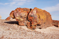 Petrified-Forest-National-Park, Arizona, USA Stock Image