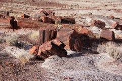 Petrified-Forest-National-Park, Arizona, USA Royalty Free Stock Photo