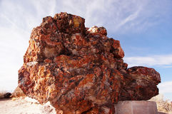 Petrified-Forest-National-Park, Arizona, USA Stock Photos