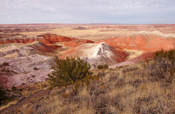 Petrified-Forest-National-Park, Arizona, USA Royalty Free Stock Photography