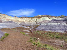 Petrified Forest National Park landscape, Arizona, USA royalty free stock photos
