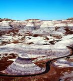 The Petrified Forest Royalty Free Stock Photo
