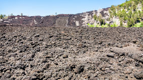 Petrified lava flow on slope of Etna Royalty Free Stock Photos