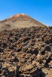 Petrified Lava Royalty Free Stock Photo