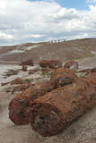 Petrified logs at painted desert Stock Photography