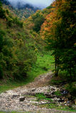 Petrified mountain trail. Mountain trail in Piatra Craiului mountains in a late and foggy autumn day Stock Photography
